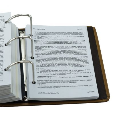 Droit des compagnies annoté et lois connexes 2